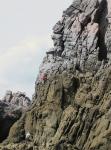 「滋賀の小川山」と「最果てエリア」そして2回目の神津島