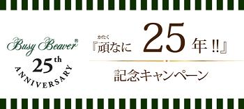 BB25-2